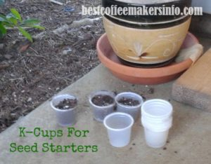 kcups to start seedlings